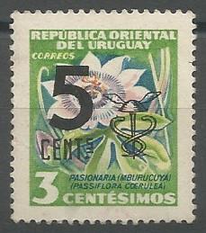 pasionaria (Passiflora coerulea)