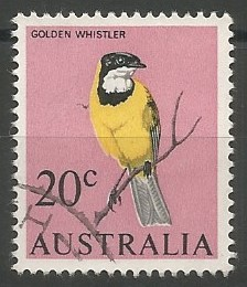 golden whistler