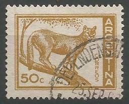 león americano