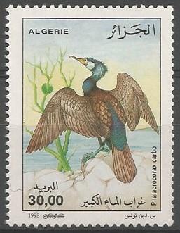 Aïn Bessem, 1953 -