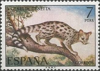 gineta