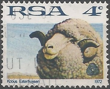 sheep and wool industry