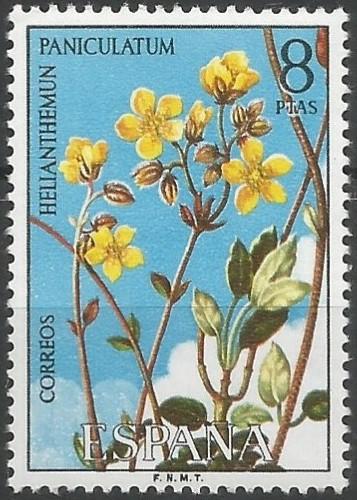 estepa cendrosa (Helianthemun paniculatum)