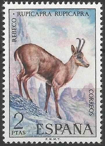 Aunque el género Rupicapra había sido clasificado como monoespecífico, en 1985 se impuso la separación en dos especies: Rupicapra rupicapra para el rebeco del norte y este, y R. pyrenaica para el del sudoeste europeo. Esta parece proceder de una dispersión del género, originario de Asia, anterior a la glaciación de Riss, mientras que la otra procedería de una segunda en el interglaciar Riss-Würm.