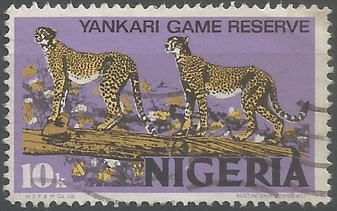 Yankari Game Reserve is the country's richest wildlife oasis and covers a total area of 2,244 km². Originally created as a game reserve in 1956, it was upgraded to a national park in 1991 and managed by the National Parks Service until 2006 when responsibility for the management of the reserve was handed back to Bauchi State Government. (Wildlife Conservation Society, Calabar, 2021)