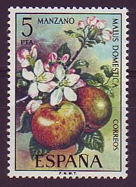 manzano (Malus domestica)